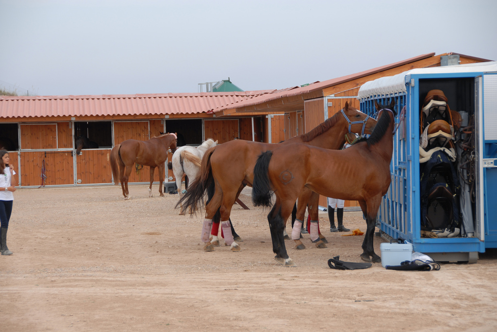 Horse Riding in Corvera, Murcia with Club Hipica at Corvera Golf